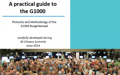 A practical guide to the G1000